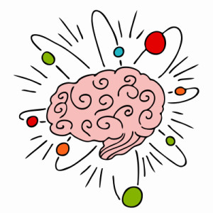 building brain plasticity
